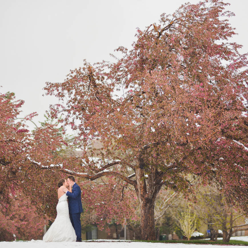 Bride and groom portrait, cherry blossoms in the snow, baldoria on the water wedding venue, denver wedding planner, colorado wedding planner, real weddings, sweetly paired, winter wedding inspiration, destination wedding planner, spring wedding